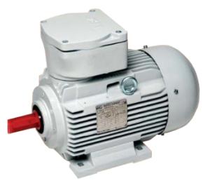 Standaard motor (Gas)