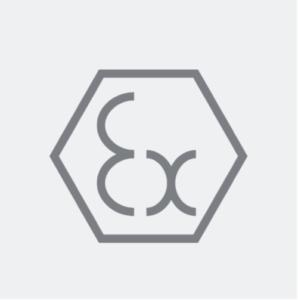 Ex logo grijs